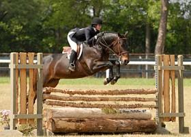 GA International Horse Park at Conyers, GA